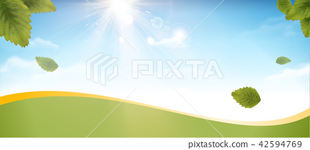 Blue sky and green leaves banner 42594769