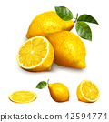 Yellow lemon fruit 42594774