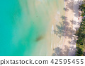 Aerial landscape of idyllic white sand beach 42595455