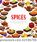 Vector poster of spices and seasonings 42596796