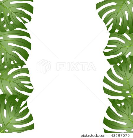 Philodendron Monstera Leaf Border 42597079