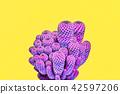 cactus, minimal, art 42597206