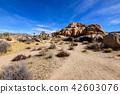 奇怪的岩石在約書亞樹國家公園,美國 42603076