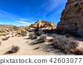 奇怪的岩石在約書亞樹國家公園,美國 42603077