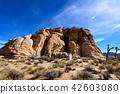 奇怪的岩石在約書亞樹國家公園,美國 42603080
