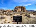 奇怪的岩石在约书亚树国家公园,美国 42603087