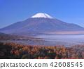 landscape, scenery, scenic 42608545