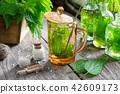 Nettle tea, infusion bottle, homeopathic globules. 42609173