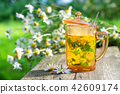 Healthy herbal tea cup and daisy herbs bunches. 42609174