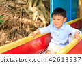 park, parks, playground 42613537