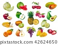 Fruits seamless pattern. A set of elements painted 42624650