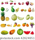 Fruits seamless pattern. A set of elements painted 42624651