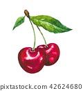 과일, 신선한, 녹색 42624680