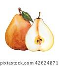 배, 과일, 과실 42624871