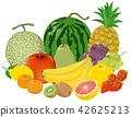 fruit, fruits, illustration 42625213