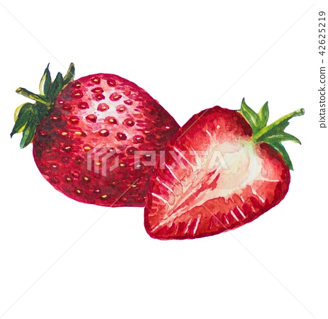 Strawbery fruit painting.Painted with watercolor. 42625219