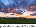 """Biei的""""北海道""""小山·晚上風景的風景 42627062"""