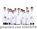醫生 牙齒矯正醫師 博士 42629256
