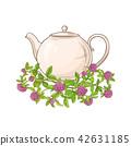 tea, clover, illustration 42631185