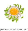 stevia, plant, tea 42631187