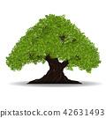 tree vector 42631493