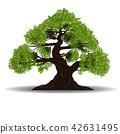 big tree vecto 42631495