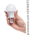 light bulb in a female hand 42636975