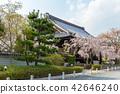 ทัศนียภาพ,ภูมิทัศน์,ประเทศญี่ปุ่น 42646240