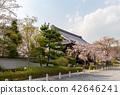 ทัศนียภาพ,ภูมิทัศน์,ประเทศญี่ปุ่น 42646241