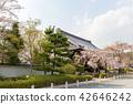 ทัศนียภาพ,ภูมิทัศน์,ประเทศญี่ปุ่น 42646242