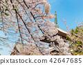 ทัศนียภาพ,ภูมิทัศน์,ประเทศญี่ปุ่น 42647685