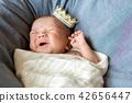 新生兒照片 42656447