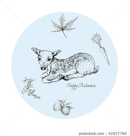 Fawn Deer with Autumn Fruits and Plants 42657760