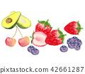 과일 그린 수채화 42661287