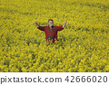 Farmer examining blossoming rapeseed field and gesturing 42666020