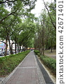 신 타이베 시중게 제 3 기념 공원 (제 4 공원) 42671401