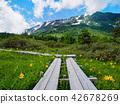 여름 쯔가 이케 산책 42678269
