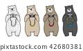 bear, camera, polar 42680381