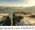 stone morning misty 42690435
