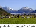 紐西蘭 新西蘭 風景 42692542