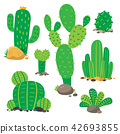 cactus vector collection design 42693855