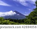Fuji in early summer 42694056