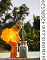Firefighter with fire and suit for protect fire. 42695529