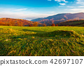meadow, autumn, hill 42697107
