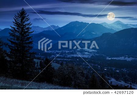 beautiful landscape of zakopane valley at night 42697120