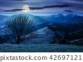 landscape, moon, tree 42697121