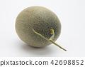 水果 哈密瓜 哈密瓜 42698852