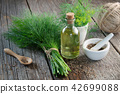 Bunch of dill, mortar of fennel seeds and dill oil 42699088