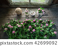 Pink clover flowers, mortar and clover tincture. 42699092