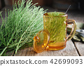 Cup of healthy tea and bunch of horsetail herbs. 42699093